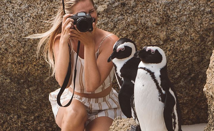 Pro Tips To Beautify Your Old Travel Pics